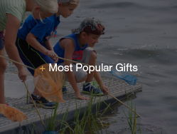 Link to Most Popular Gifts